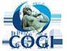 COGI - The multidisciplinary Gynecology Congress